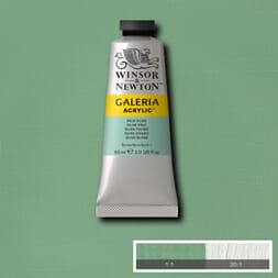 WN GALERIA ACRYLIC PALE OLIVE 60ML 435