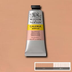 WN GALERIA ACRYLIC PALE TERRACOTTA 60ML 437