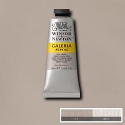 WN GALERIA ACRYLIC PALE UMBER 60ML 438