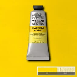 WN GALERIA ACRYLIC PROCESS YELLOW 60ML 537